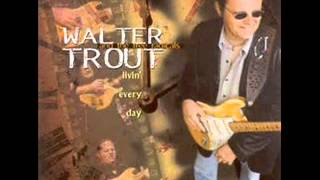 Walter Trout Nothin 39 But The Blues