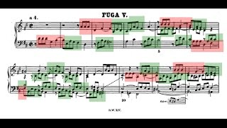 Amazing Counterpoint Analysis Of D Major Fugue From Bach 39 S Well Tempered Clavier Book Ii