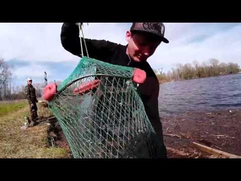 ловля на поплавочную удочку видео в украине