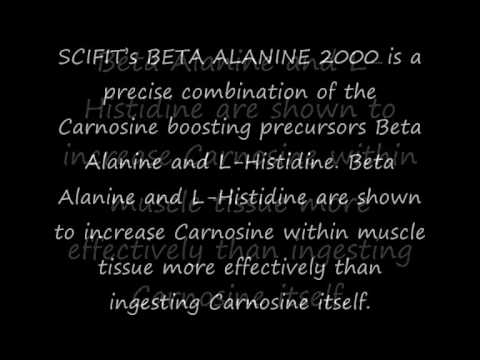 Sci-Fit Beta Alanine 2000