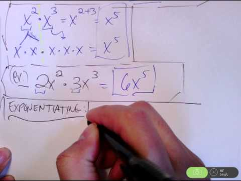 Algebra I: Exponent Rules | Multiplying + Exponentiating Variable and Integers
