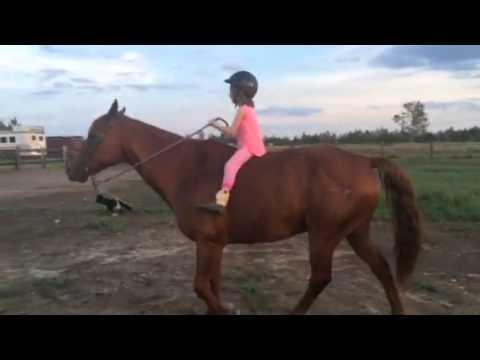 Ava riding bareback