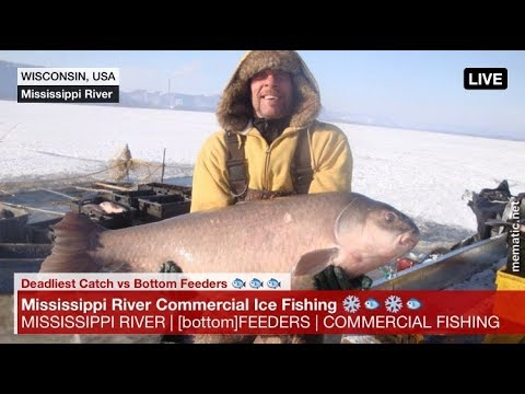 Deadliest Catch meets Bottom Feeders Commercial Ice Fishing