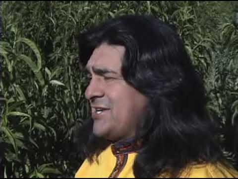 Orlando Pozo-Palomitayqa