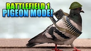 BF1 War Pigeon Gameplay & Details! | Battlefield 1 Pigeon Mode