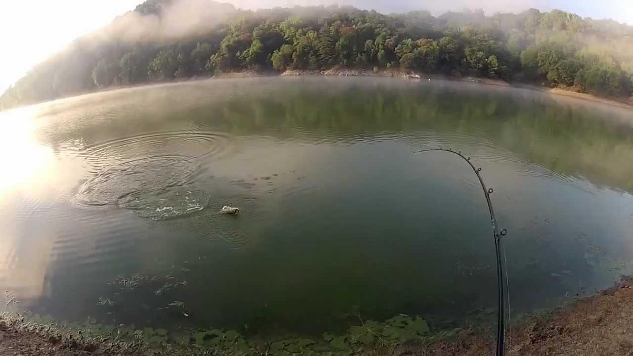 Topwater frog fishing in northern california lakes youtube for Fishing lakes in southern california