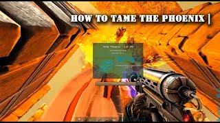 How to Tame a Phoenix ! ( True Method )
