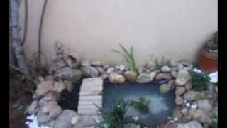 COMO CONSTRUÍ MI ESTANQUE Y MI ROCALLA (Building a small pond and rockery)