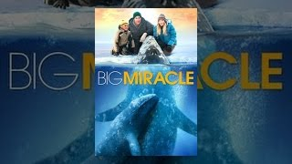 The Cold Light of Day - Big Miracle
