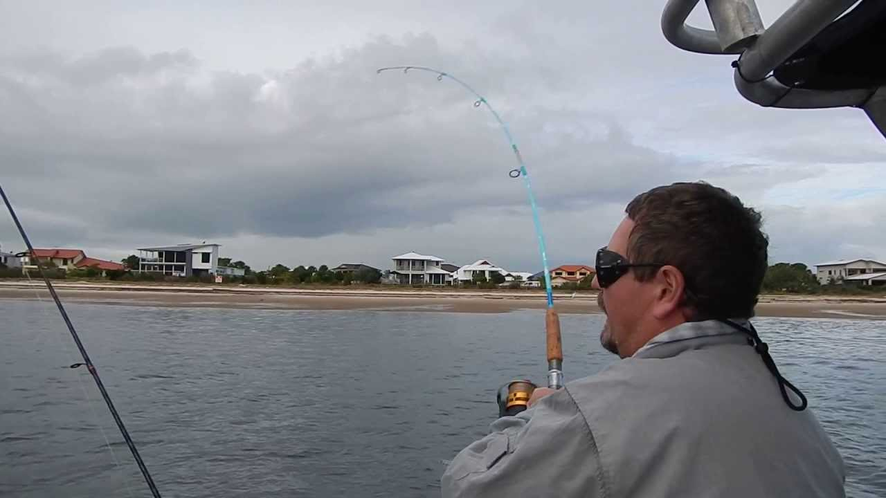 Pumicestone passage snapper with boab boat hire bribie for Fishing license for disabled person