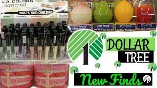 DOLLAR TREE HAUL!! NEW GOODIES 12-30-17