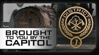 District 7: A Message From The Capitol