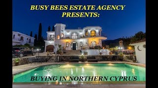 BUSY BEES PRESENTS: A BUYERS VIDEO