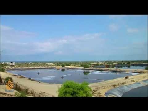 Gaza's Water Shortage