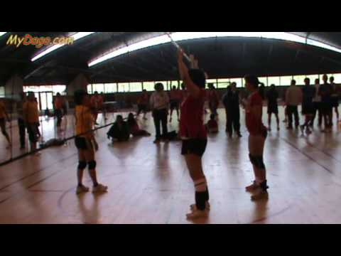 RNS 2010 Qualifications Volley Feminin 3 5