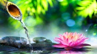 Relaxing Music 24/7, Meditation, Reiki Music, Sleep, Calm Music, Sleep Music, Healing, Study, Spa