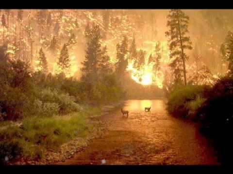 Aryadika - Save Our Earth.wmv