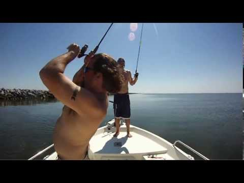 Fishing for speckled trout at dauphin island alabama gopro for Dauphin island fishing report