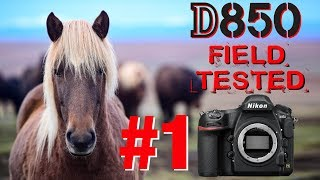 D850 Complete Testing & Review - 3 weeks in ICELAND