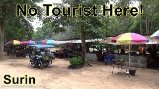Amazing Wild Edible Food Market in Rural Surin, Right on the highway.