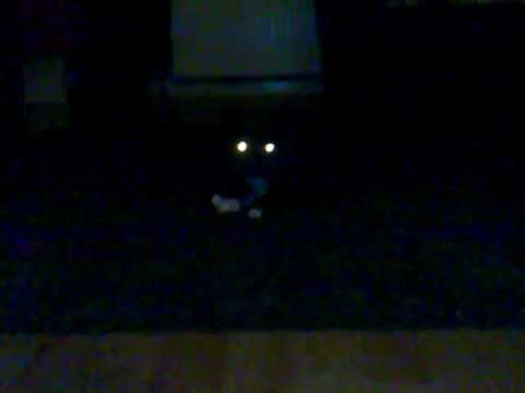 Demon Cat Eyes In The Dark