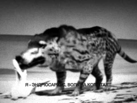 Эндрюсархус - волк на копытах