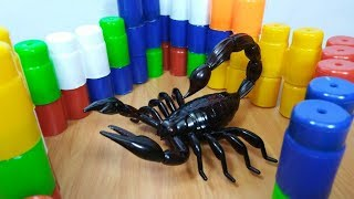 Scorpion Remote Control Toy For Kids