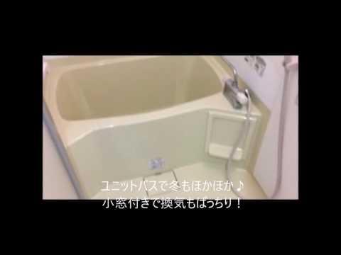 うるま市赤道 2LDK 5.5万円 アパート