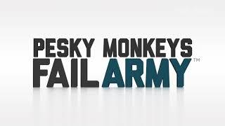 Tai nạn hài hước với khỉ