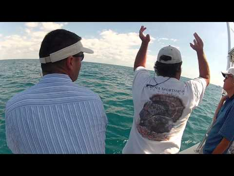 Deep Sea Fishing in Sarasota, Florida