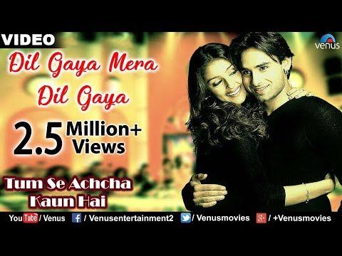 Dil Gaya Mera Dil Gaya Full Video Song : Tum Se Achcha Kaun Hai | Nakul Kapoor,