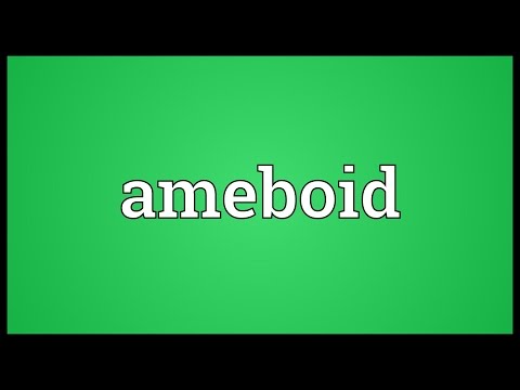 Header of ameboid