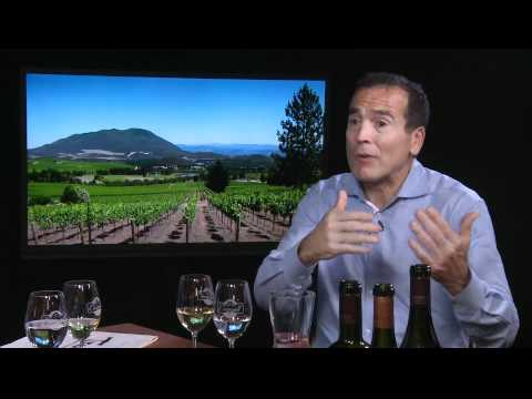 The Wine Down - Learn About Chilean Wines With Alex Guarachi of Guarachi Family Wines