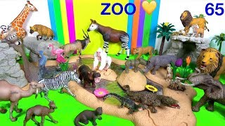 Wild Zoo Animal Toys For Kids - Learn Animal Names and Sounds - Learn Colors Wild Animals 64