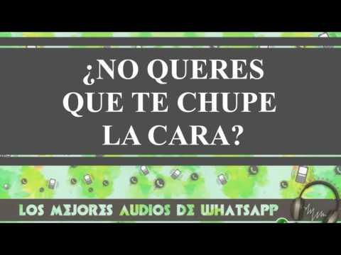 Audios y videos whatsapp - ¿no queres que te chupe la cara?