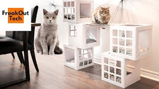 5 Awesome Inventions Your Cat Will Love   Best Cat Inventions