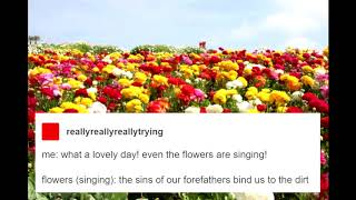 what a lovely day! even the flowers are singing!
