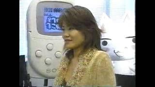 '90年代~2000年代前半 PS/PS2 テレビゲーム特集色々 トゥナイト2他