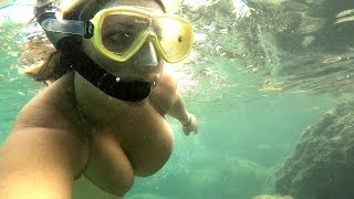 Key West Free Dive Snorkel at Ft. Zachary Taylor