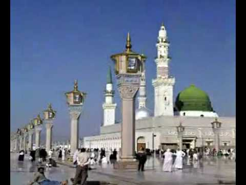 shahe madina ( NAAT ) top no  1