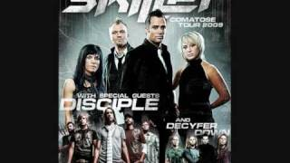 Watch Skillet Take video
