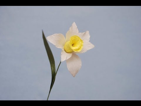 Как сделать цветок нарцисс 978