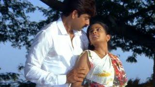 Pellaina Kothalo Telugu Full Movie Part - 14/14 || Jagapathi Babu, Priyamani