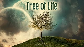 Audiomachine-Tree of Life: Full Album HQ