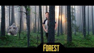 SZEREZZÜK BE A FEGYVEREKET! FOREST LIVE