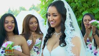 Endalkachew's And Yalemzewd's Wedding Video (Ethiopian Wedding)