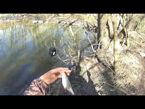 все о рыбалке ловля налима весной