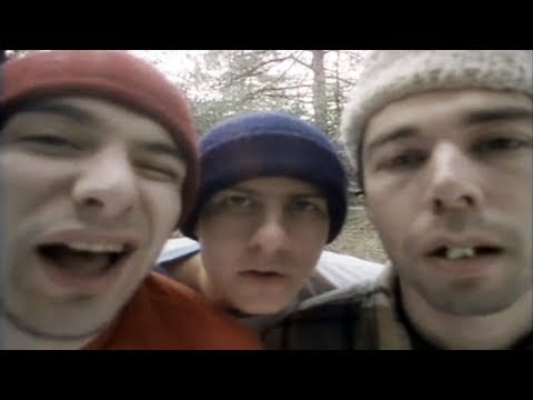 Beastie Boys ft. Cypress Hill - So What&#039;cha Want (Remix) [R.I.P. MCA (8/5/64 - 5/4/12)]