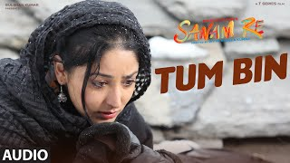 download lagu Tum Bin Full Song   Sanam Re  gratis
