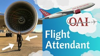 Omni Air International Flight Attendant (review, interview & training)